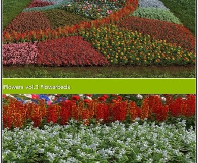 R&D Group - iFlowers Vol 3 Flowerbeds (1)