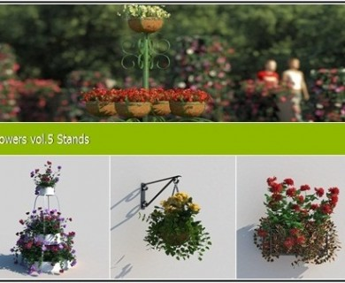 R&D Group - iFlowers Vol 5 Stands (6)