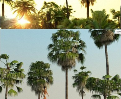 R&D Group - iTrees Vol 1 Palms (1)