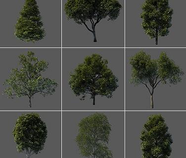 Vargov3d - 3D Models Tree (6)