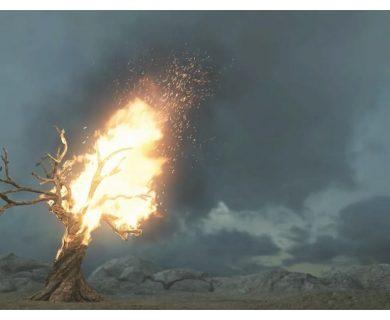 PS2009-Simulating-a-Burning-Tree-in-Maya--2-850x510