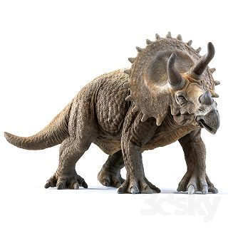 pro-3dsky-best-model-of-the-week-triceratops-1