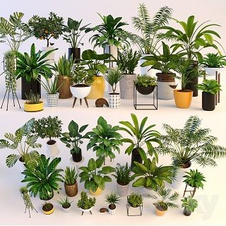 pro-3dsky-plants-mega-set-1