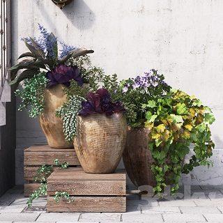 pro-3dsky-summer-in-pots-1
