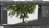 03 - Modeling the Tree Trunk Base Mesh - Modeling the Trunk_s