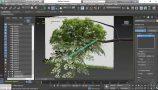 10 - Creating & Applying Foliage - Applying Foliage_s