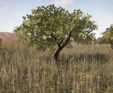آموزش ساختن درخت های Low Poly در تری دی مکس
